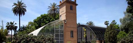 Orto botanico valencia - Jardin botanico valencia ...