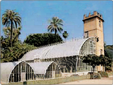 Botanical Garden in Valencia