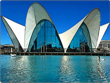 The Oceanografic The City of Arts and Sciences